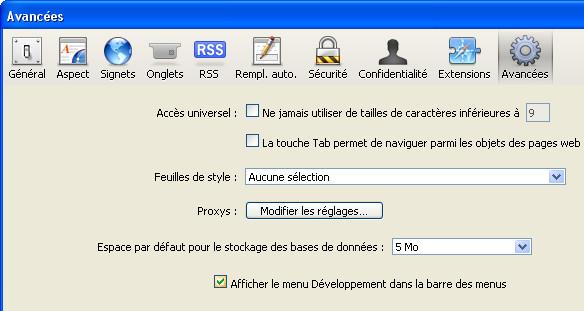 Safari activation outils développeur